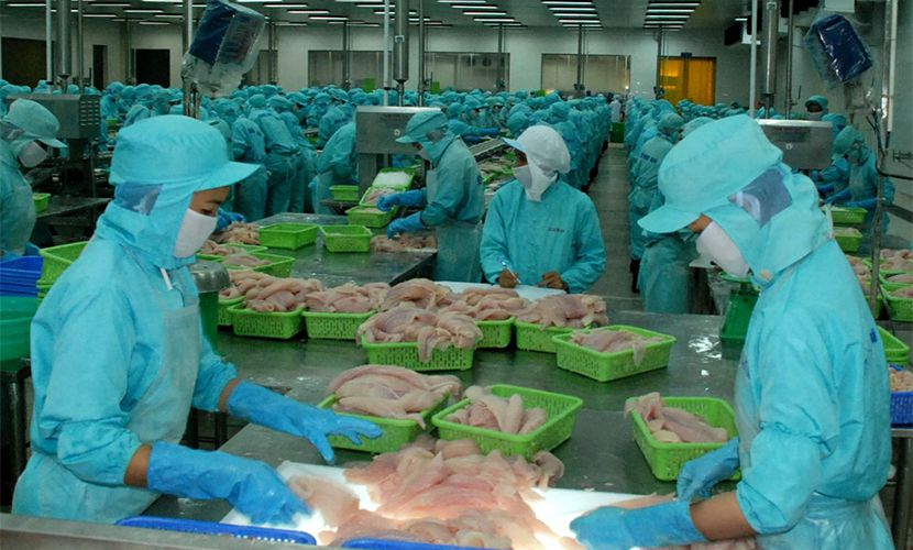 Agro - forestry - fishery export from Vietnam