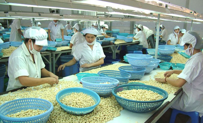 Export Vietnamese agricultural products