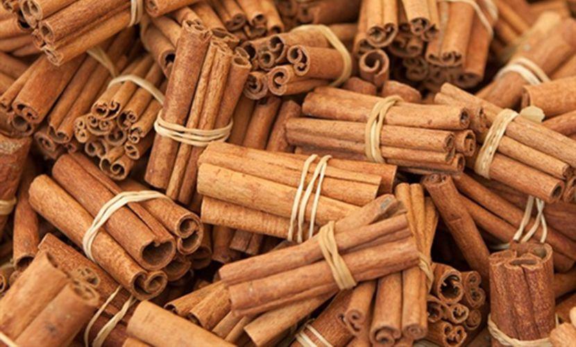 Cinnamon sticks in Yen Bai