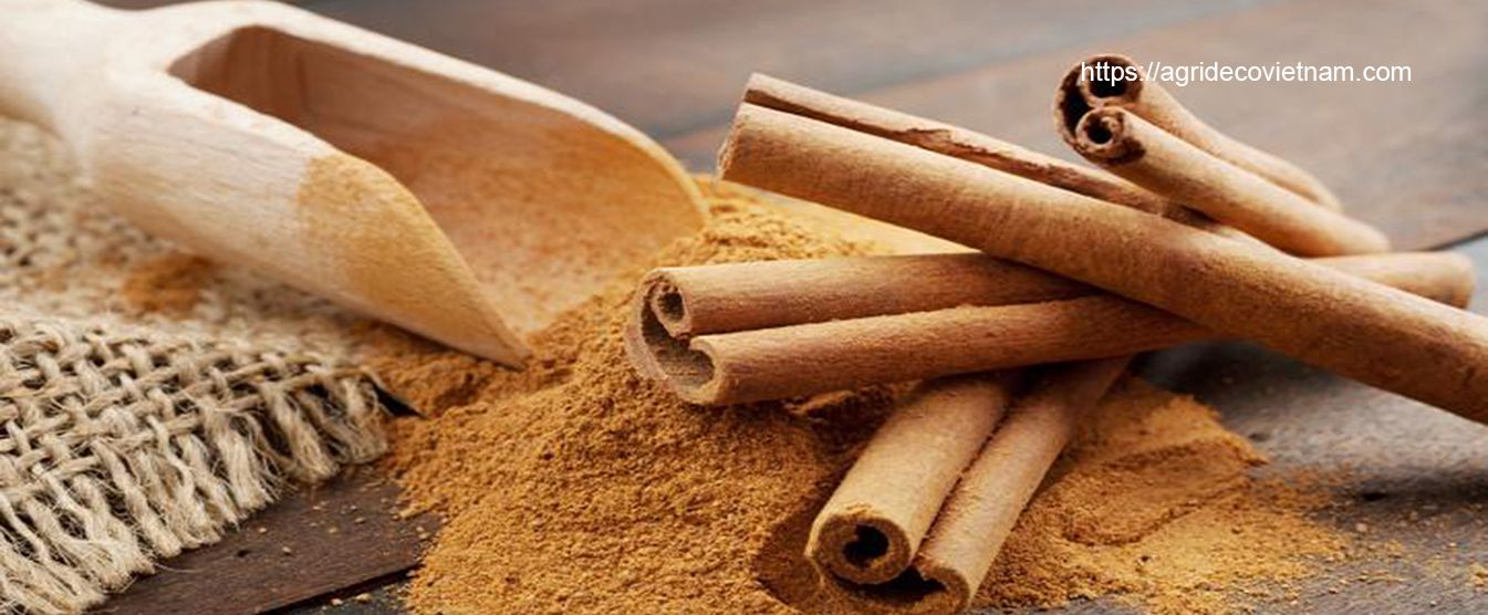 CINNAMON PRODUCTS FROM VIETNAM