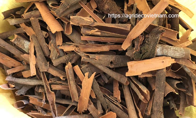 Broken cinnamon in Vietnam