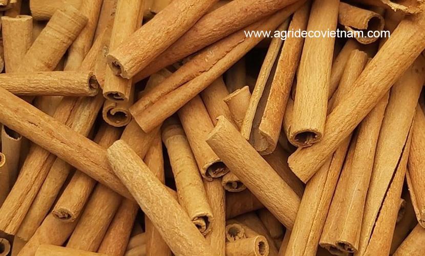 Vietnamese cinnamon sticks
