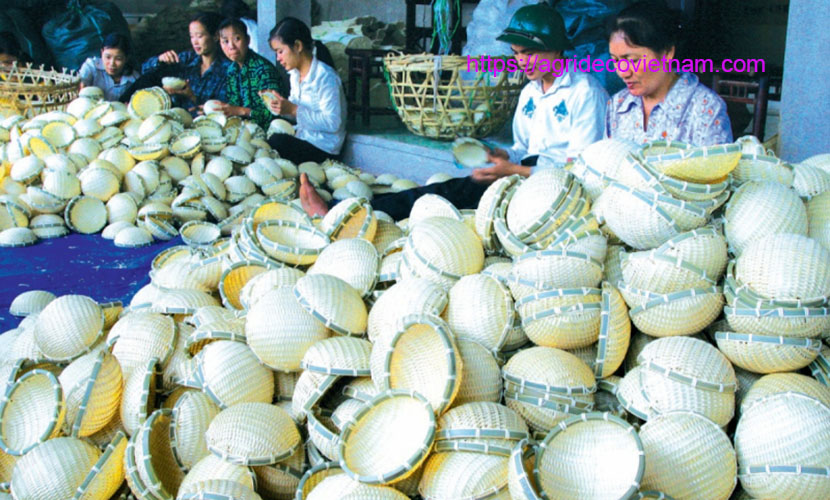 Tang Tien bamboo and rattan craft products
