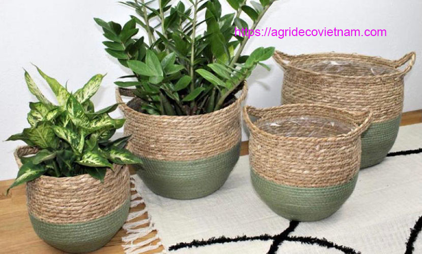 Vietnamese handicraft: basket for planting
