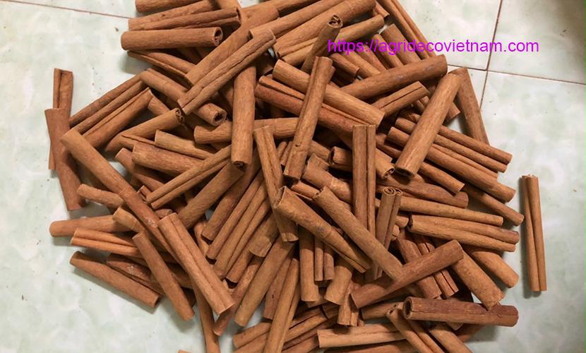 Vietnam cinnamon barks
